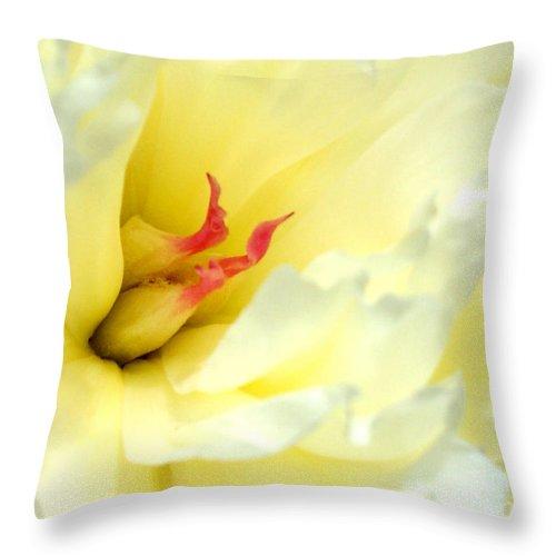 Peony Throw Pillow featuring the photograph Lemon Chiffon I by Valerie Fuqua