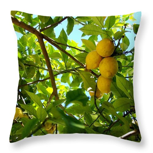 Lemons Throw Pillow featuring the photograph Lemon Tree by Christopher Rowlands