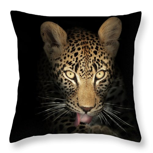 Leopard Throw Pillow featuring the photograph Leopard In The Dark by Johan Swanepoel