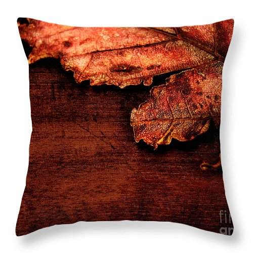 Red Throw Pillow featuring the photograph Let Me Hold You... by Dana DiPasquale