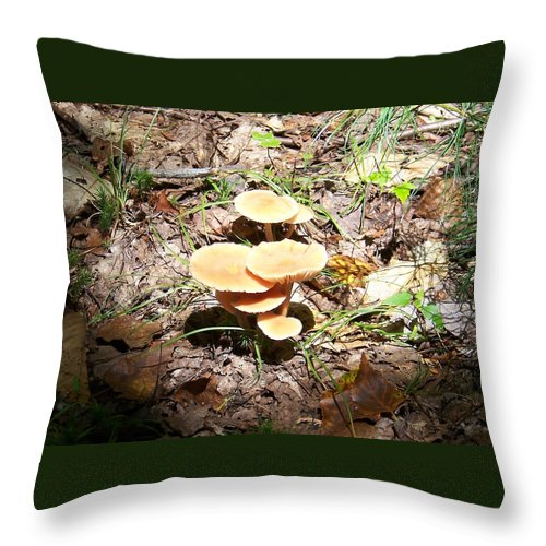 Mushrooms Throw Pillow featuring the photograph Let The Sunshine In - Photograph by Jackie Mueller-Jones