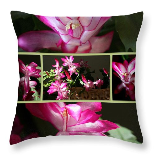 Christmas Throw Pillow featuring the photograph Let There Be Light by Linda Galok