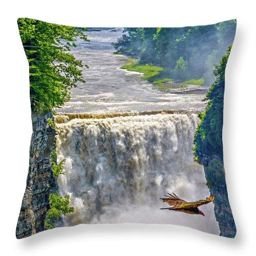 Steve Harrington Throw Pillow featuring the photograph Letchworth State Park 4 by Steve Harrington