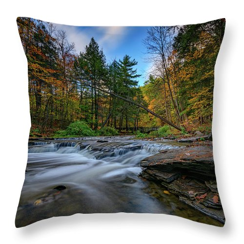 Autumn Throw Pillow featuring the photograph Letchworth's Wolf Creek by Rick Berk