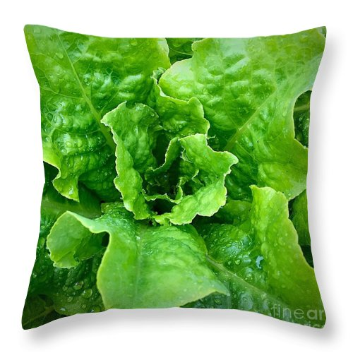 Ume Throw Pillow featuring the photograph Lettuce by Bri Lou