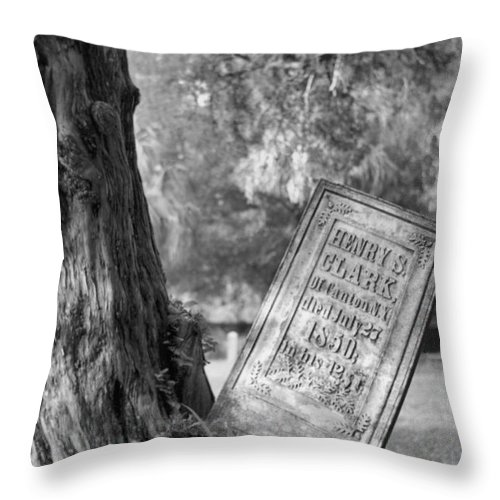 Graves Throw Pillow featuring the photograph Life After Death by Richard Rizzo