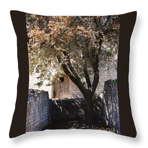 Life Throw Pillow featuring the photograph Life And Death by Nadine Rippelmeyer