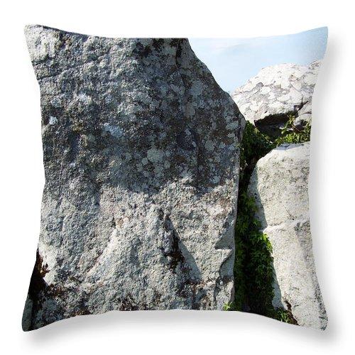 Irish Throw Pillow featuring the photograph Life At Creevykeel Court Cairn Sligo Ireland by Teresa Mucha