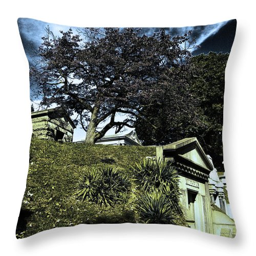Cemetery Throw Pillow featuring the photograph Life From Death by Scott Wyatt