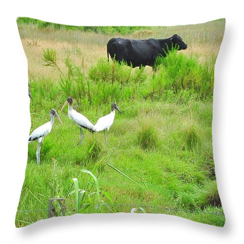 Cow Throw Pillow featuring the photograph Life In The Slough by Amy Spear