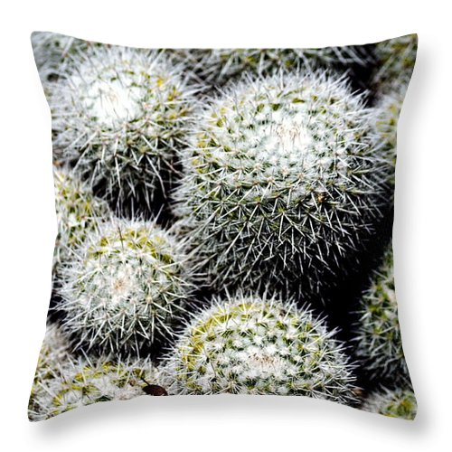 Clay Throw Pillow featuring the photograph Life Sucs by Clayton Bruster
