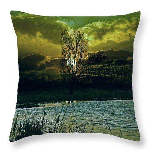 Light Throw Pillow featuring the photograph Light-captor by Joachim G Pinkawa