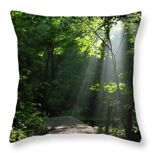 Light Throw Pillow featuring the photograph Light II by Douglas Stucky