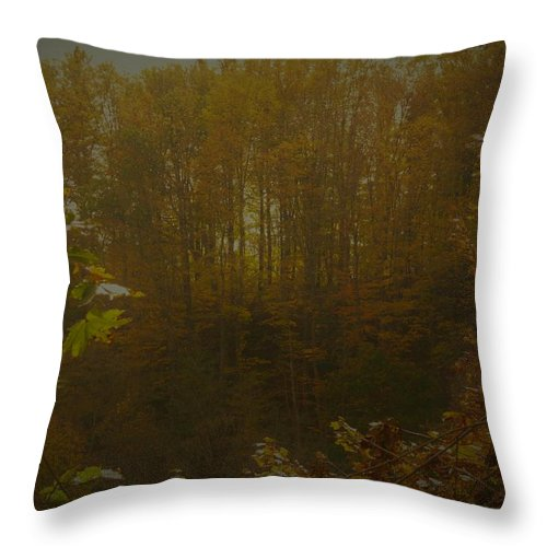 Autumn Scenic Spencer Gorge Yellow Golden Gold Leaves Ontario Throw Pillow featuring the photograph Light In Autumn by The Sangsters