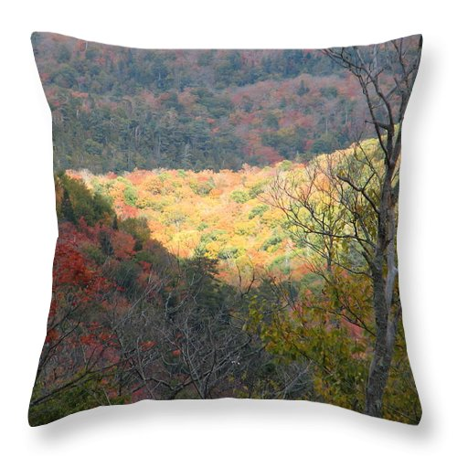 Fall Throw Pillow featuring the photograph Light On The Valley by Kelly Mezzapelle