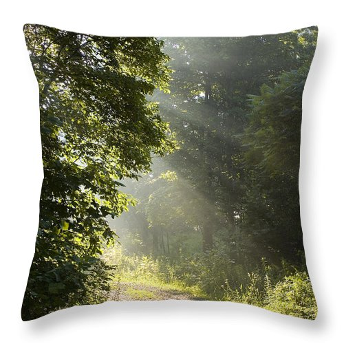 West Virginia Throw Pillow featuring the photograph Light Unto My Path by Thomas R Fletcher