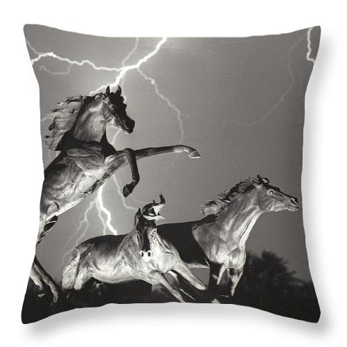 Horses Throw Pillow featuring the photograph Lightning At Horse World by James BO Insogna