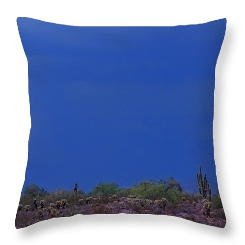 Lightning Throw Pillow featuring the photograph Lightning Strike In The Desert by James BO Insogna