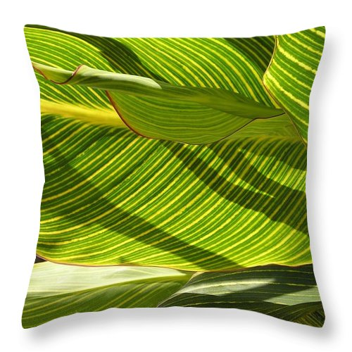 Throw Pillow featuring the photograph Lightplay Through The Leaves 3 by Eve Paludan
