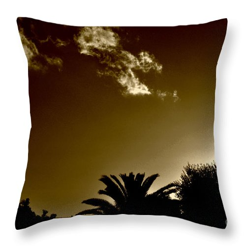 Clay Throw Pillow featuring the photograph Lights by Clayton Bruster