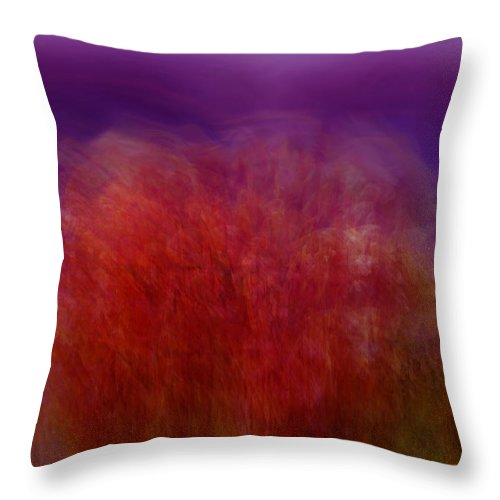 Abstract Art Throw Pillow featuring the digital art Like A Dream by Linda Sannuti
