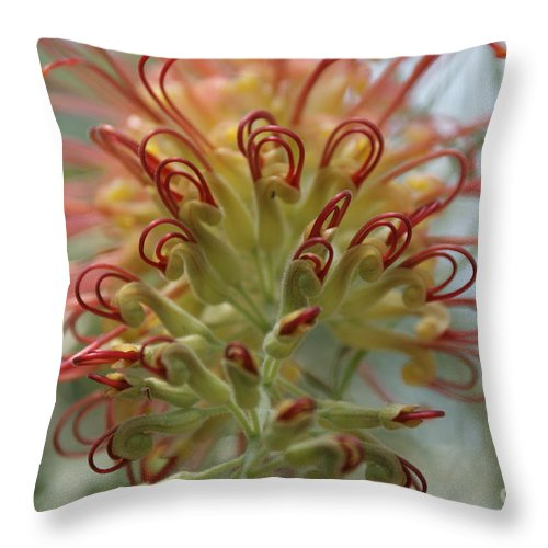 Floral Throw Pillow featuring the photograph Like Stems of a cherry by Shelley Jones
