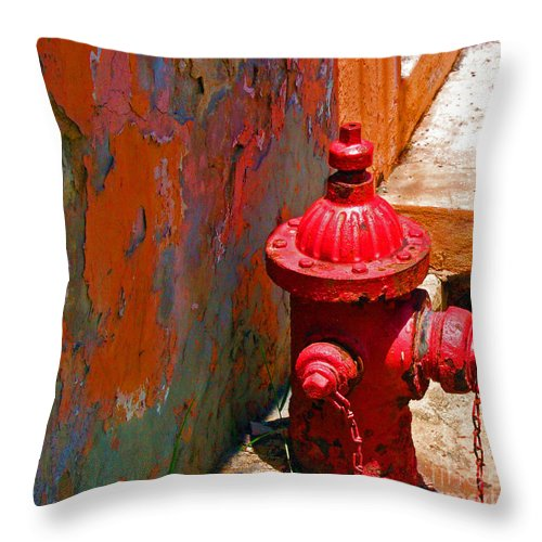 Red Throw Pillow featuring the photograph Lil Red by Debbi Granruth