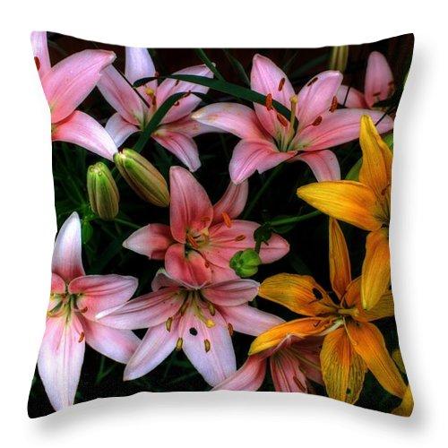 Autumn Throw Pillow featuring the photograph Lilies by David Matthews