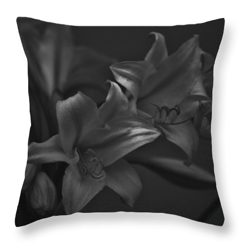 Black And White Photos Throw Pillow featuring the photograph Lillies In Black And White by Kathy Kirkland