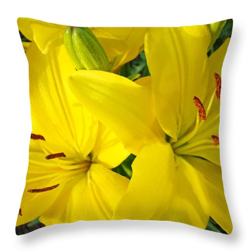 Lilies Throw Pillow featuring the photograph Lilly Flowers Art Prints Yellow Lilies Floral Baslee Troutman by Baslee Troutman