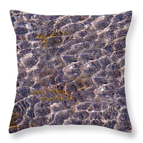 Lake Throw Pillow featuring the photograph Lilly Lake by Mark Ivins