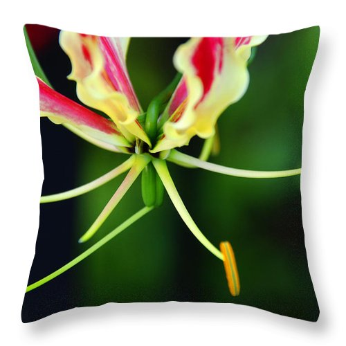 Lilly Throw Pillow featuring the photograph Lilly by Susanne Van Hulst