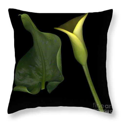 Yellow Throw Pillow featuring the photograph Lily And Leaf Number Two by Heather Kirk
