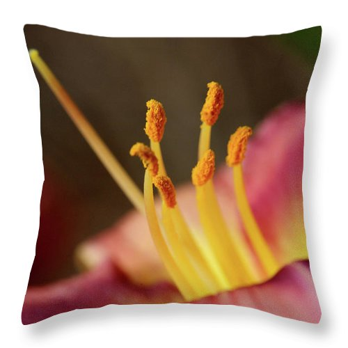 Arrangement Throw Pillow featuring the photograph Lily Bloom by Alan Look