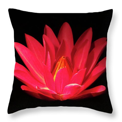 Lily Pads Throw Pillow featuring the photograph Lily by Deborah England