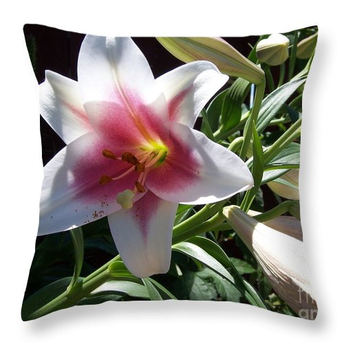 Lily Throw Pillow featuring the photograph Lily by Emily Young