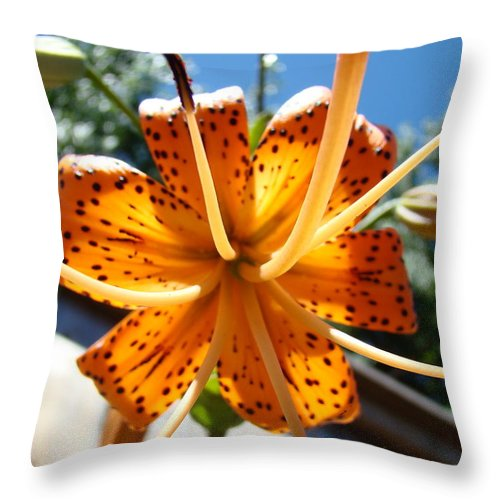 Lilies Throw Pillow featuring the photograph Lily Flower Artwork Orange Lilies 3 Giclee Art Prints Baslee Troutman by Baslee Troutman