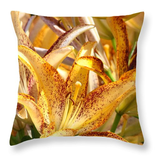 Lilies Throw Pillow featuring the photograph Lily Flower Garden Art Prints Canvas Floral Lilies Baslee Troutman by Baslee Troutman
