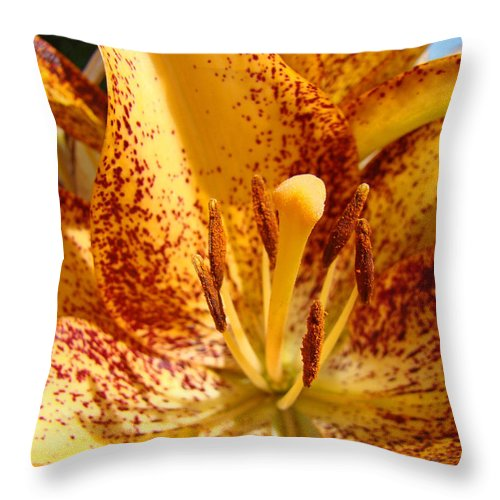 Lilies Throw Pillow featuring the photograph Lily Flower Macro Orange Lilies Floral Art Print Baslee Troutman by Baslee Troutman