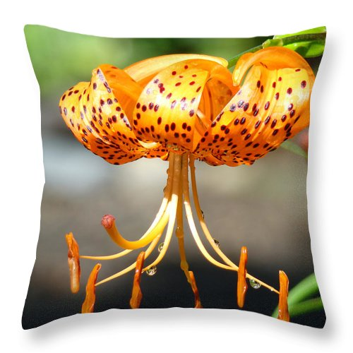 Lilies Throw Pillow featuring the photograph Lily Flowers Art Orange Tiger Lilies Giclee Baslee Troutman by Baslee Troutman