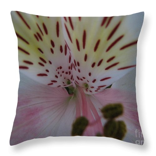 Patzer Throw Pillow featuring the photograph Lily by Greg Patzer