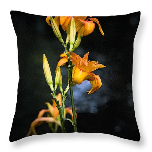 Lily Monet Garden Flora Throw Pillow featuring the photograph Lily in Monets Garden by Sheila Smart Fine Art Photography