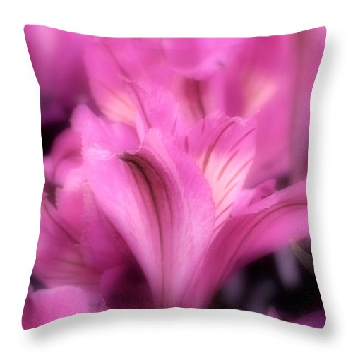 Lily Throw Pillow featuring the photograph Lily by Kenneth Krolikowski