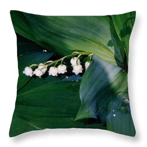 Flower Throw Pillow featuring the photograph Lily Of The Valley by Corinne Elizabeth Cowherd