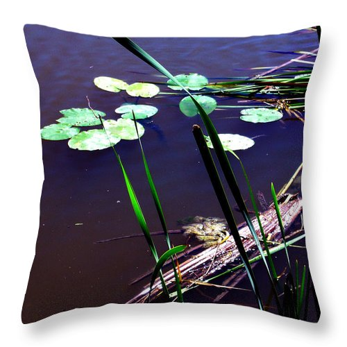 Reeds And Lily Pads Throw Pillow featuring the photograph Lily Pads And Reeds by Joanne Smoley