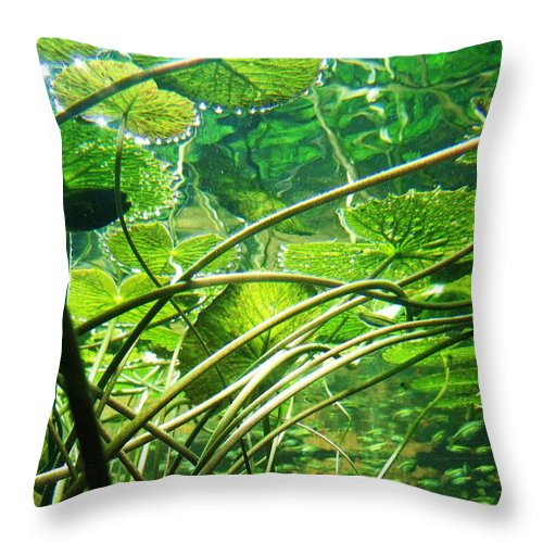 Lily Pads Throw Pillow featuring the photograph Lily Pads I by Anna Villarreal Garbis