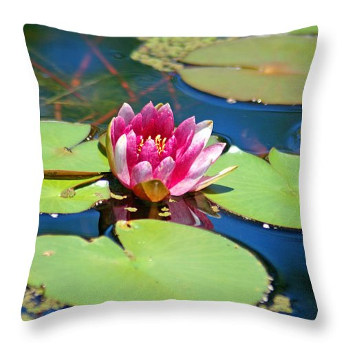 Lily Pond Throw Pillow featuring the photograph Lily Pond by Donna Bentley
