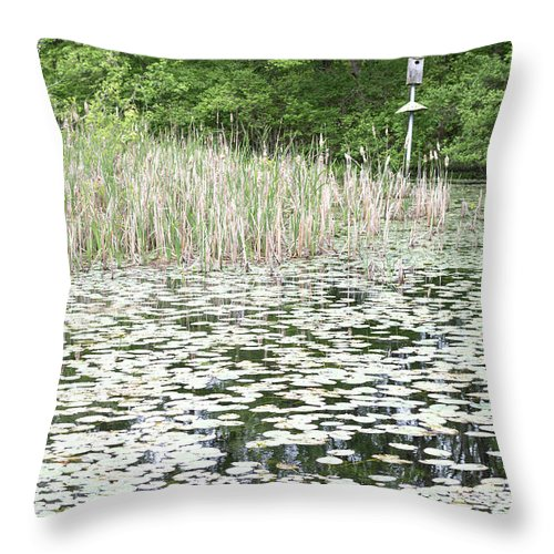 Lily Pond Throw Pillow featuring the photograph Lily Pond by Robert Popa
