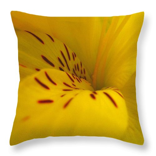 Yellow Throw Pillow featuring the photograph Lily by Rhonda Barrett