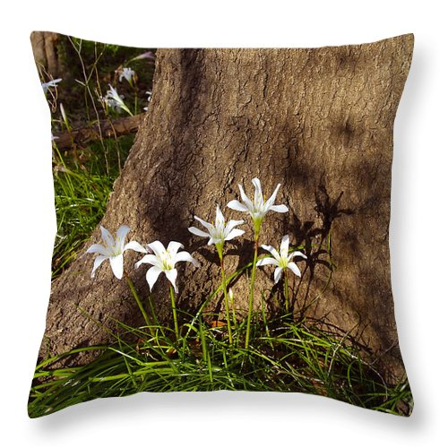 Atamasco Throw Pillow featuring the photograph Lily's Atamasco by David Lee Thompson